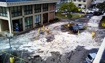 Honolulu Grease Spill